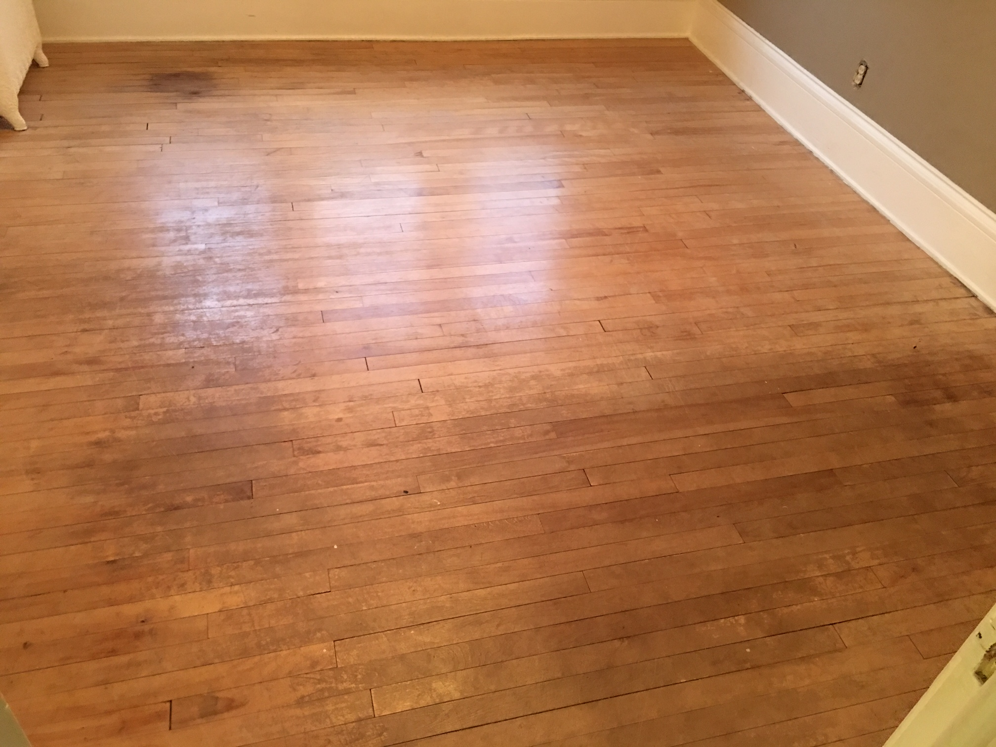 Northeast Minneapolis Maple Floors Northeast Minneapolis Maple Floors  Northeast Minneapolis Maple Floors ...