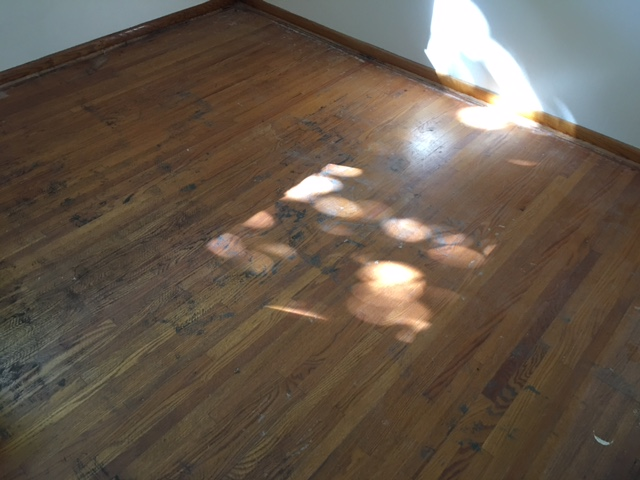Red Oak Hardwood Floors in St. Paul